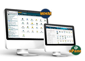 Web Hosting-Control Panel