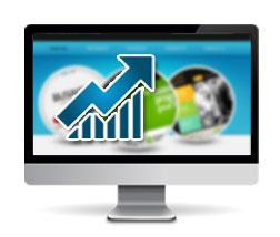 SEO-Website Analysis